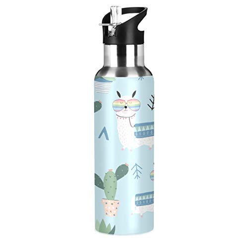 Qilmy Llama Cactus Water Bottle Set Double Wall Vacuum Insulated Flask Stainless Steel with Straw Lid 20oz for Women Men Hot for 10 Hours
