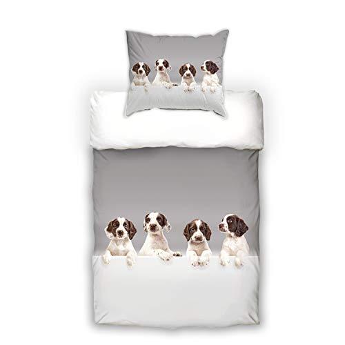 Schwanberg Bettwäsche Babydogs Hunde Welpen Grau Renforcé, Größe:135x200 cm + 80x80 cm