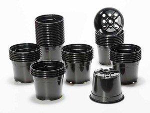 Pot de culture DUO 10.5 cm noir (x 50)