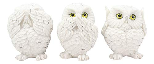 Ebros See Hear Speak No Evil Fat Baby White Owls Figurines Set of 3 Decor Wisdom of The Woods Nocturnal Snow Owl Bird Themed Chibi Owlets Collectible Statues