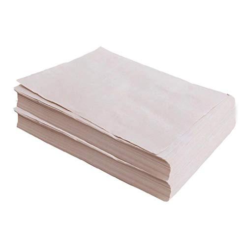 Runfun Auskeimen Papier Saatgut Keimgerät Papier Papier Für Anzuchtschale Gemüsepflanzgarten Farm 150pcs Garten Wachsen Zubehör