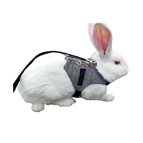 Wontee Rabbit Vest Harness and Leash Set Adjustable Formal Suit Style for Bunny Kitten Small Animal Walking (M)