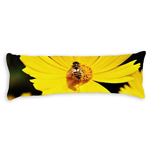 Promini Yellow Cosmos Flower and Bee Body Pillow Cover Pillowcases Cushion with Hidden Zipper Closure for Sofa Bench Bed Home Decor 20'x54'