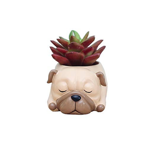 Youfui Home Decor Pot, Animal Succulent Planter Flowerpot for Home Office Desk Decoration (Sleep Pug)