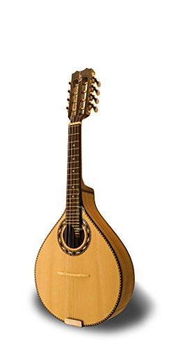 APC Instruments Mdl311 - Instrumento de cuerdas