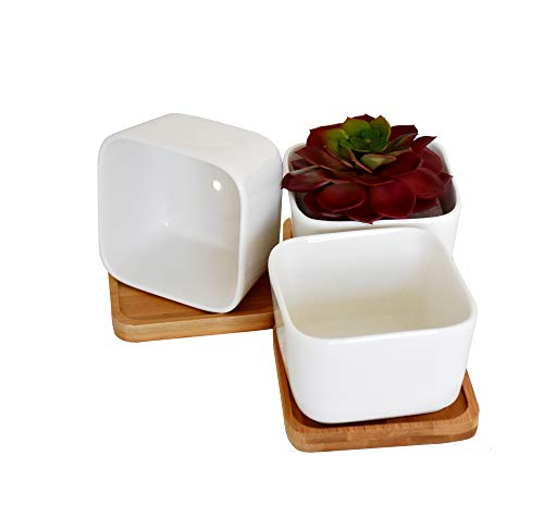 INMING 4 Inch White Ceramic Succulent Plant Pots Cactus Flower Plant Pot Pack of 3 Square Containers with Bamboo Tray (3, 4 Ingh)