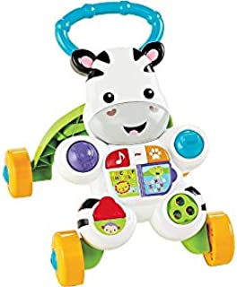 Fisher Price Learn With Me Zebra Walker Dlf00 , Multi Color