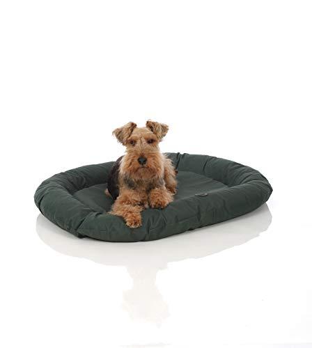 Pets&Partner® Indoor und Outdoor Matte für kleine bis große Hunde, Grün M