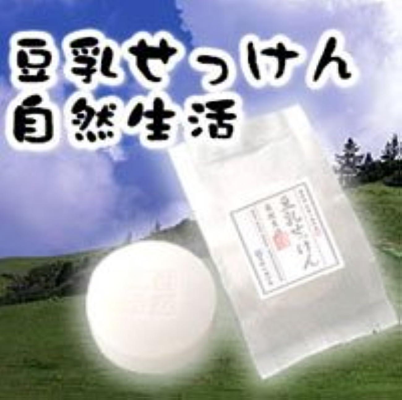 疎外する静かなプリーツ豆腐の盛田屋 豆乳せっけん 自然生活