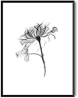 MILUKA Láminas para enmarcar colección Bloom | Carnation | Tamaño 20x30cm, 30x40cm, 50x70cm (30 x 40 cm)