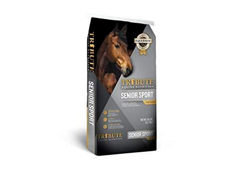 Senior Sport for Horses