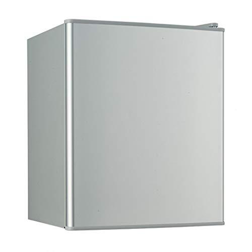 LQIQI 21L Mini Nevera con congelador para Dormitorio silencioso silencioso Vintage Plateado...