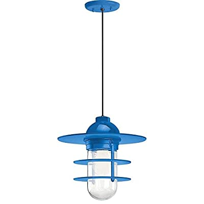 """Troy Lighting 5DRRS10MBLU-BC Retro Industrial - 10"""" One Light Pendant with Flat Shade and Wire Guard, Blue Finish with Clear Glass"""