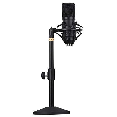 Karaoke Anchor Pied de Micro Carte Son Ensemble, Bm800 Enregistrement Microphone, Micro USB, la Musique, Le Son