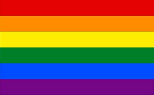 Michael & Rene Pflüger Barmstedt - 8,4x5,4 cm - Premium Aufkleber Fahne/Flagge Regenbogen Rainbow Sticker Motorrad Auto Bike Gay Pride LGBT CSD Autoaufkleber