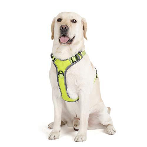PETTOM Hundegeschirr Gepolstert Weich Geschirr Hund Reflektierend für Kleine Mittelgroße und Große Hunde (Schwarz/Grün/Blau/Rosa/Orange)