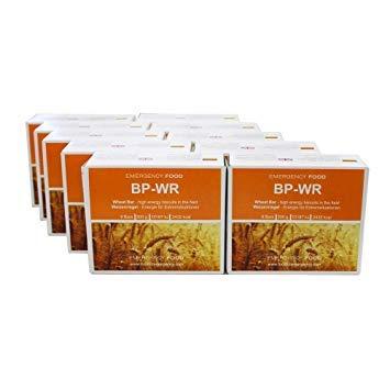 10 x BP WR Emergency Food (ehemals BP5) - High Energy Biscuits, Extremlange Haltbarkeit bis über 35 Jahre