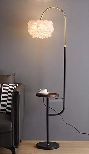 HMKJ Looks Great Light Fixture Nordic Floor Lamp Living Room Bedroom Creative Coffee Table Feather Fishing Floor Lamp With USB Charging