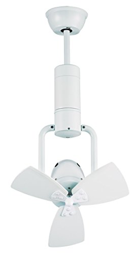 Sulion - Ventilador de Techo Blanco con Control Remoto, 9,7 W | Ajustable, de Doble Rotación, Compatible con Techos Inclinados | Iluminación Y Ventilación de Alta Calidad