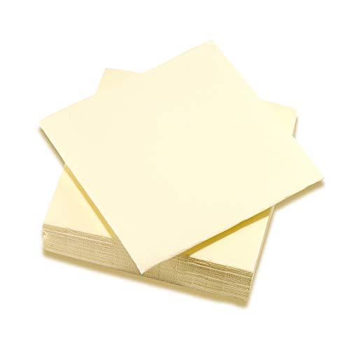 SURLYS - Serviettes Papier 2 Plis Couleur Vanille - Serviettes en Ouate Certifiées Ecolabel - Lot de 24 Paquets de 100 Serviettes de Table 38 x 38 cm