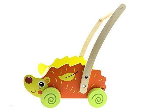 RB&G Laufwagen mit Bauklötzer - Transporthilfe für Babys und Kinder, spielerisch Laufen Lernen, Motorik Spielzeug ab 12 Monate