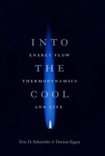 Image OfInto The Cool: Energy Flow, Thermodynamics, And Life By Eric D Schneider (2005-11-01)