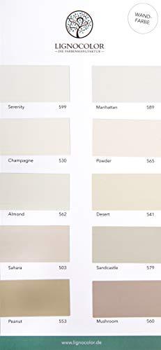 Lignocolor Wandfarbe Farbtonkarte EINZELN Echtaufstriche nach Farben sortiert (Brauntöne)