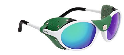 Alpina zonnebril Tour Glacier SIBIRIA sportbril
