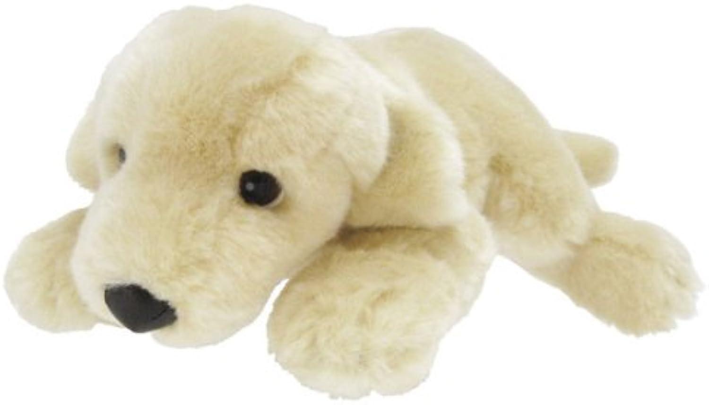 Labrador Retriever WH 2S (japan import)