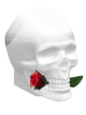 Ed Hardy Skulls & Roses For Her FOR WOMEN by Christian Audigier - 2.5 oz EDP Spray