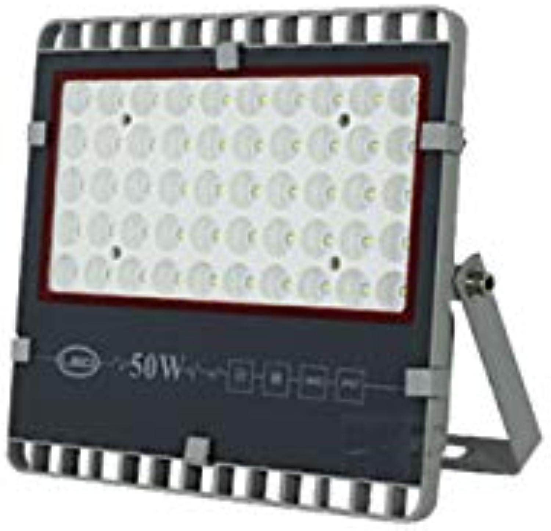 Faretto Led Esterno,LED Outdoor surbrillance concentrant imperméable à l'eau Protection contre la foudre Projecteur carré (Farbe   Positive Weiß light-50W)