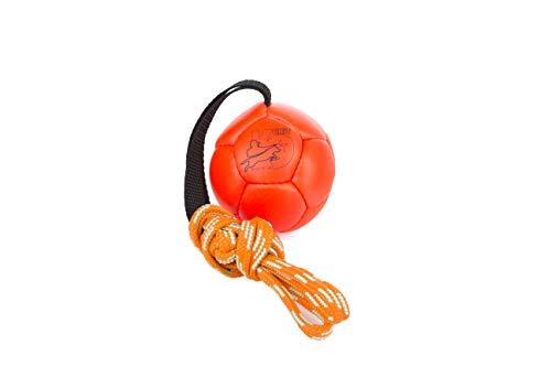 Julius-K9 KORA4-OR, Schautraining Ball, 80 mm, orange
