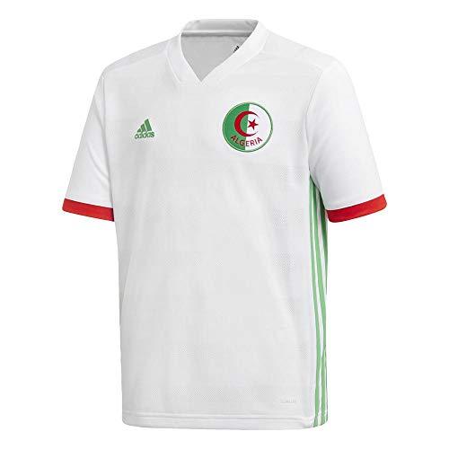 adidas Kinder Algerien Heimtrikot, White/Semi Flash Lime/Red, 164.0