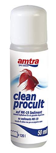 amtra clean procult 50ml