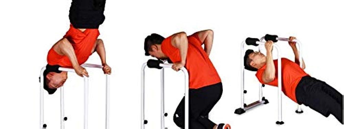 綺麗な欠伸再編成するH-TRAINING ディップススタンド 人気 筋トレ 全身 トレーニング可能 逆立ち運動 懸垂運動 斜め懸垂 筋力 自宅 エクササイズ 腹筋 胸筋 腕 背中 広背筋 筋肉 強化 腕立て伏せ プッシュアップバー フロントレバー ダイエット器具 BS Gym Spider(海外直送品)