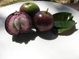 Fresh Caimito (Star Apple) 2lb
