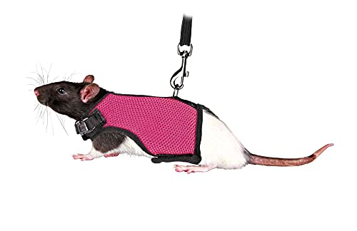 TRIXIE Small Animal Harness with Bungee Leash, X-Small