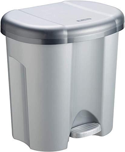 Rotho Duo Mülleimer 2x 10l zur Mülltrennung mit Deckel, Kunststoff (PP) BPA-frei, silber, 2 x 10l (39,0 x 32,0 x 40,5 cm)
