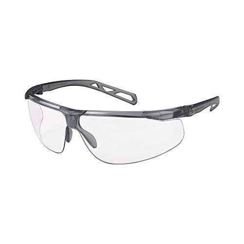 Delta Plus KISK2IN - Gafas de policarbonato, incoloras, 100 unidades
