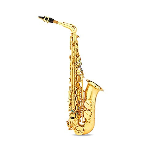 Nye El saxofón Alto, el Cuerpo Principal está Hecho de Material de latón, bellamente Tallado a Mano, con una Maleta, etc, Adecuada para Principiantes, exámenes, Color Dorado