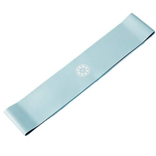 Resistance Bands Oefening Loop, huidvriendelijk Yoga Physio Bands, makkelijk te gebruiken spanband, Toepassen op Pilates, aerobics, Strength Conditioning,Blue