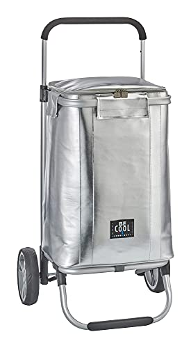 foolonli Einkaufstrolley Kühltrolley Kühl-Trolley Shopping 36 Liter Trolley BE CooL Silber