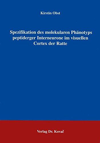Spezifikation des molekularen Phänotyps peptiderger Interneurone im visuellen Cortex der Ratte .