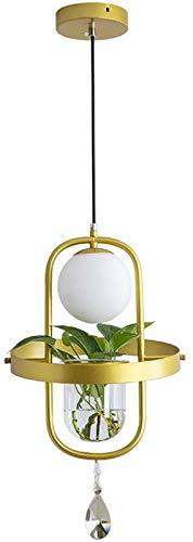 GYC Lámpara Colgante Lámpara de Techo Industrial Vintage Lámpara Colgante Negra Iluminación Colgante con Cadena Ajustable, Lámpara Colgante hidropónica de Planta de vidri