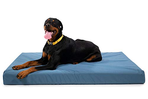 """K9 Ballistics Tough Orthopedic Dog Bed X-Large Nearly Indestructible & Chew Proof, Washable Ortho Pillow for Chewing Puppy - for X-Large Dogs 54""""x38"""", Blue"""