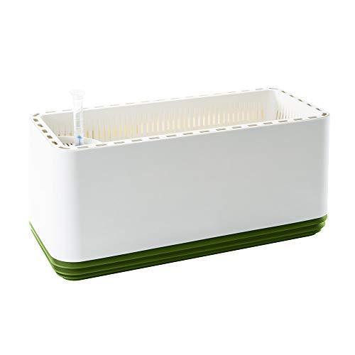 AIRY Box - Natürlicher Luftreiniger für Allergiker - Patentierter Pflanztopf als Filter gegen Schadstoffe, Haus-Staub, Pollen, Geruch, Allergie (grün, Gen. 1)