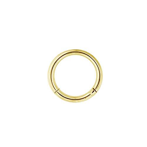 Karisma Gold Titan G23 Hinged Segmentring Charnier/Septum Clicker Helix Ring Piercing Ohrring Stärke 1,0x7mm