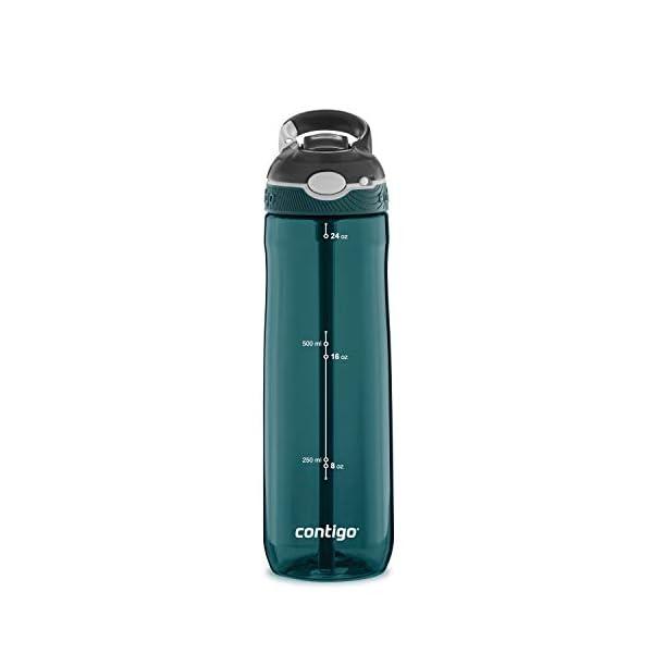 Contigo AUTOSPOUT Straw Ashland Water Bottle