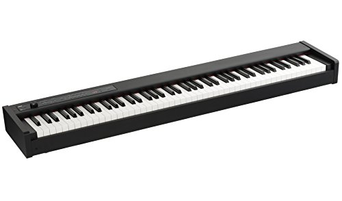 PIANO D1