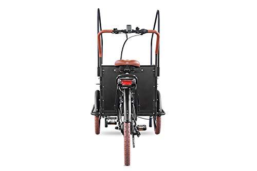 Elektro-Transportfahrrad Bakfiets Vogue Troy